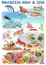 Τα θαλάσσια είδη και ζώα