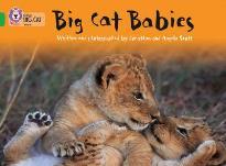 COLLINS BIG CAT : BIG CAT BABIES BAND 05/GREEN PB