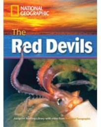 NGR : RED DEVILS C1 (+ DVD)