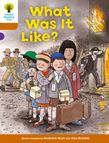 OXFORD READING TREE WHAT WAS IT LIKE? (STAGE 8) PB