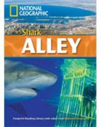 NGR : SHARK ALLEY B2 (+ DVD)