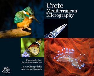 Κρήτη: Μεσογειακή μικρογραφία (Γερμανική)