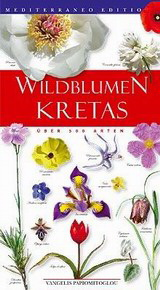 Wildblumen Kretas
