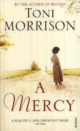 A MERCY Paperback A FORMAT