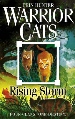 WARRIOR CATS 4: RISING STORM Paperback B FORMAT