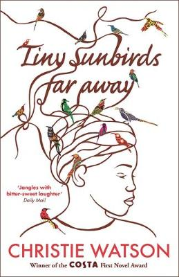 TINY SUNBIRDS FAR AWAY Paperback B FORMAT