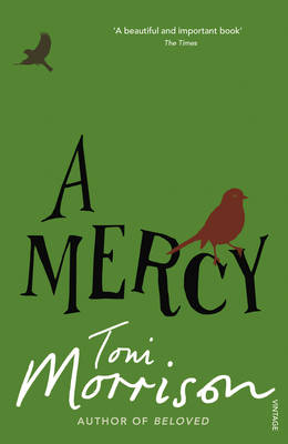 A MERCY Paperback B FORMAT