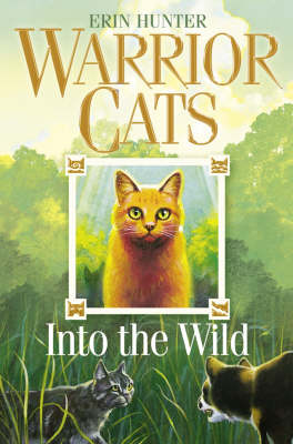 WARRIOR CATS 1: INTO THE WILD Paperback B FORMAT