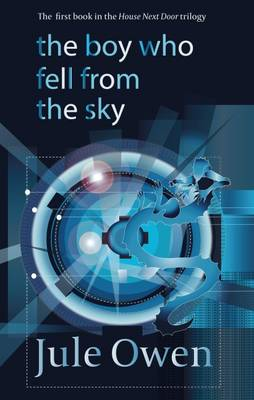 THE BOY WHO FELL FROM THE SKY  Paperback