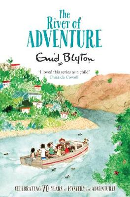 THE RIVER ADVENTURE Paperback