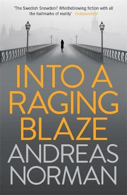 INTO A RAGING BLAZE Paperback B FORMAT