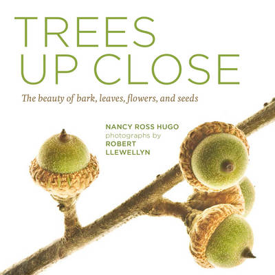 TREES UP CLOSE : THE BEAUTY OF BARK, LEAVES , FLOWERS ANS SEEDS Paperback