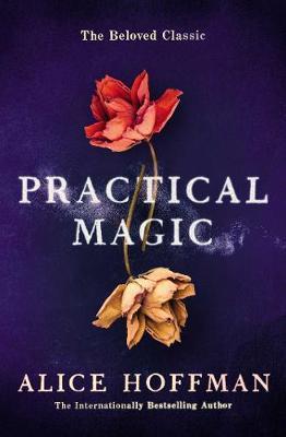 PRACTICAL MAGIC  Paperback