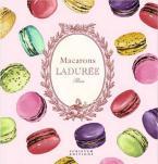 MACARONS: THE RECIPIES BY LADUREE HC