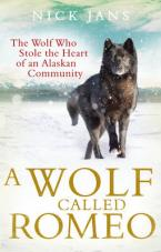 A WOLF CALLED ROMEO  Paperback