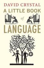 A LITTLE BOOK OF LANGUAGE Paperback