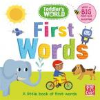 FIRST WORDS : A LITTLE BOARD BOOK OF FIRST WORDS WITH A FOLD-OUT SURPRISE HC BBK