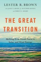 GREAT TRANSITION  Paperback