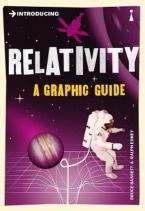 INTRODUCING RELATIVITY : A GRAPHIC GUIDE Paperback