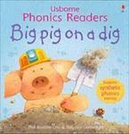 USBORNE PHONIC READERS : BIG PIG ON A DIG Paperback