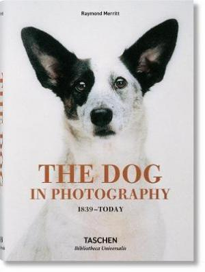 THE DOG IN PHOTOGRAPHY HC