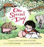 ONE SPECIAL DAY: A STORY FOR BIG BROTHERS & SISTERS  HC