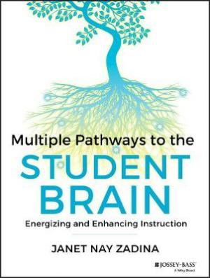 MULTIPLE PATHWAYS TO THE STUDENT BRAIN Paperback