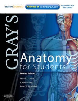 GRAY'S ANATOMY FOR STUDENTS 2ND ED Paperback