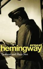 TO HAVE AND HAVE NOT Paperback A FORMAT