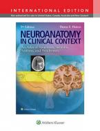 NEUROANATOMY IN CLINICAL CONTEXT 9TH ED Paperback