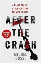 AFTER THE CRASH Paperback
