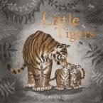 LITTLE TIGERS Paperback
