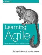 LEARNING AGILE  Paperback