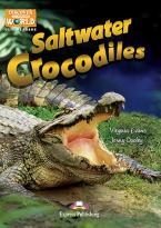 DAW : SALTWATER CROCODILES (+ Cross-platform Application)