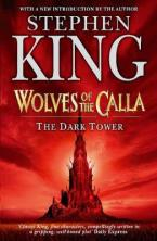 THE DARK TOWER 5: WOLVES OF THE CALLA Paperback B FORMAT