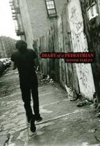 DIARY OF A PEDESTRIAN Paperback