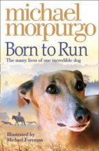 BORN TO RUN Paperback