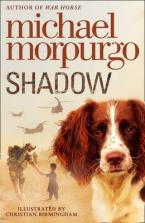 SHADOW Paperback B FORMAT