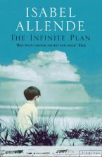 THE INFINITE PLAN Paperback B FORMAT