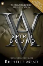 VAMPIRE ACADEMY 5: SPIRIT BOUND Paperback B FORMAT