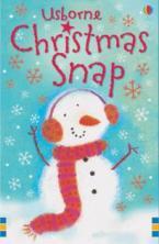 USBORNE ACTIVITY CARDS : CHRISTMAS SNAP