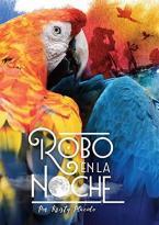 ROBO EN LA NOCHE