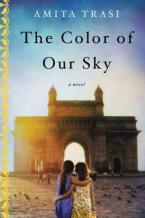 THE COLOR OF OUR SKY Paperback