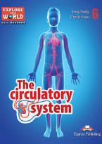 EOW 6: THE CIRCULATORY SYSTEM (+ Cross-platform Application)